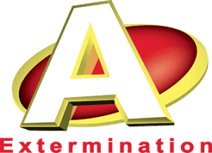 Aextermination St-Hyacinthe